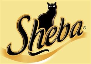 SHEBA / ШЕБА