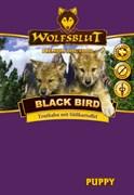 WOLFSBLUT (ВОЛЧЬЯ КРОВЬ) BLACK BIRD PUPPY (ЧЕРНАЯ ПТИЦА ДЛЯ ЩЕНКОВ)